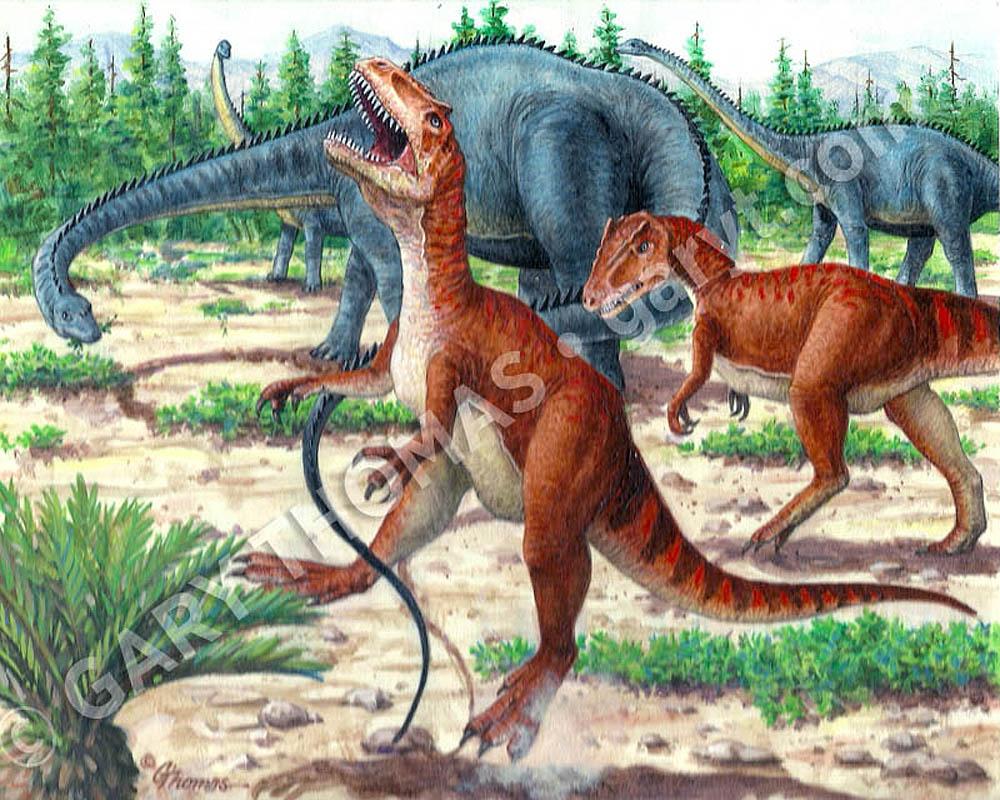 Diplodocus allosaurus - Dinosaure diplodocus ...